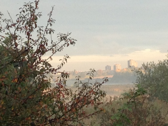 Here is a new view of  the University of Essex - from an early misty morning walk in Wivenhoe.